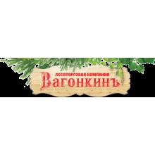 «Вагонкинъ» город Казань